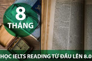 8 THÁNG HỌC IELTS READING TỪ ĐẦU LÊN 8.0